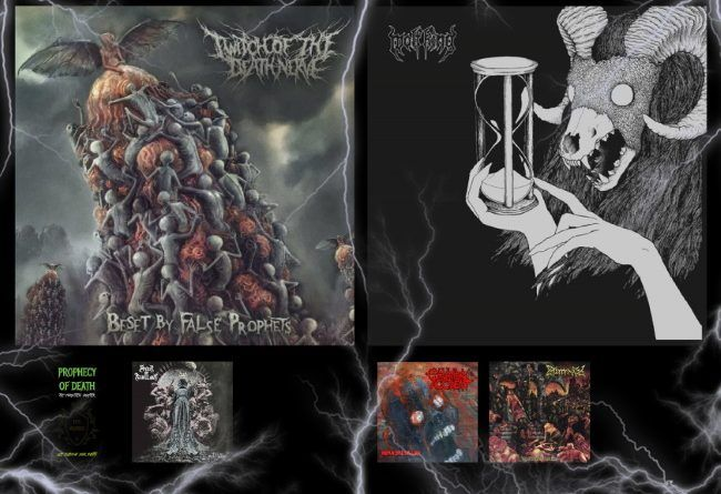 WOM Reviews – Twitch Of The Death Nerve / Wolf King / Prophecy Of Death / Cannibal Accident / Spirit Of Rebellion / Exterminated / Feed Them Death / Rotten Rectum